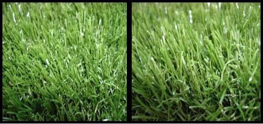 Zoysia artificial grass san diego