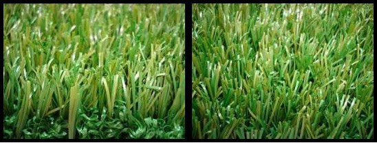 centipede blend synthetic grass san diego