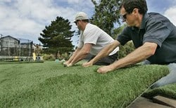 Union-Tribune Home Turf Article- Fake Grass a Hot Issue